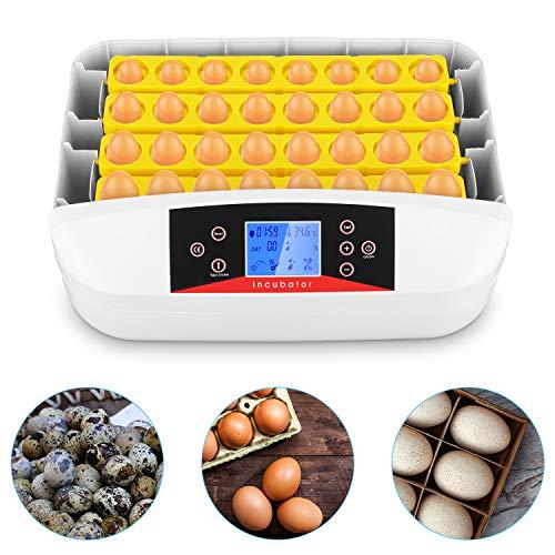Inkubator Brutmaschine Vollautomatisch 42 Hühner Eier Digitales Brutkasten mit Automatische Turner und Feuchtigkeitskontrolle, Digital Eier Hatchery für Geflügel Hühner Ente Taube Wachtel Vogel
