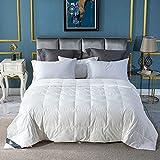 Globon Down Blanket, Extra Lightweight Summer Comforter/Duvet Insert, Noiseless & Extra Soft , 400 Thread Count, 750 Fill Power, Queen Size 90x90 inches,10 Ounce Fill Weight, White…