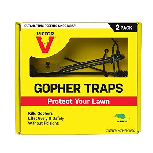 Victor M9013 Gopher 2 Traps, Black