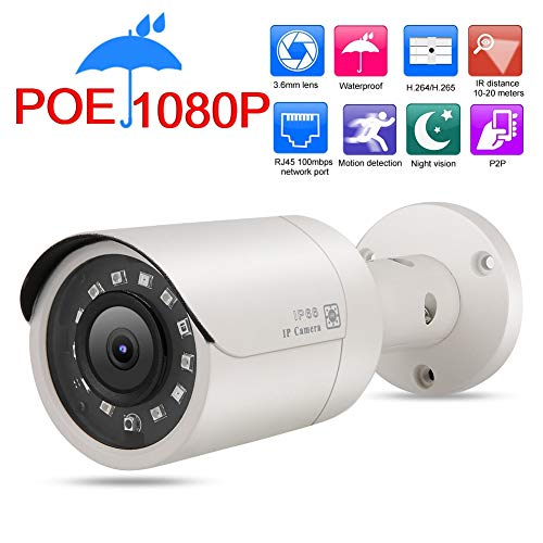POE-netwerk IP-camera, 2MP 1920 x 1080P HD IP66 waterdicht Buiten/binnen Beveiliging videobewakingscamera Bulitin 12 stuks SMD IR Leds Lichten Nacht VIsion RJ45, 100 Mbps, POE Optioneel netwerk