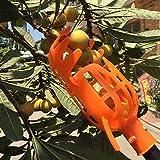 XiaoOu Herramientas de recolección Recolector de Frutas de Gran altitud Sin Poste Recolector de plástico de 1 Pieza sin Poste Recolector de Frutas Herramienta de recolección, Dorado