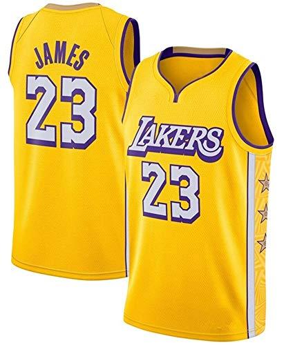 WSWZ Maglia da Uomo NBA - Maglia da Basket Los Angeles Lakers NBA 23# Lebron James - Gilet Casual Unisex Magliette Sportive Magliette Senza Maniche,A,XXL(185~190CM/ 95~110KG)