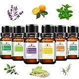 alenyk SET REGALO olio essenziale terapeutico alta qualita'100% Naturale Per Diffusori Pur...