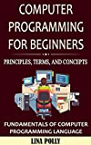 Computer Programming For Beginners: Principles, Terms, and Concepts: Fundamentals of Computer Programming Language (English Edition)