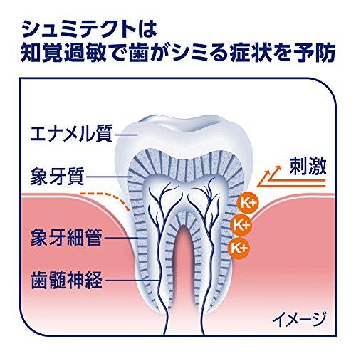 シュミテクト歯周病ケア歯磨き粉知覚過敏ケア高濃度フッ素配合<1450ppm>4本【医薬部外品】+歯周ケア歯ブラシ[お得セット]