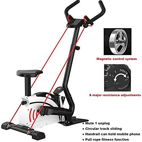 YLLN Bicicleta estática para el hogar, con Resistencia a la Velocidad, Adelgazar