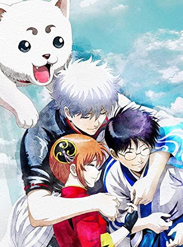 銀魂 THE FINAL(完全生産限定版) [Blu-ray]