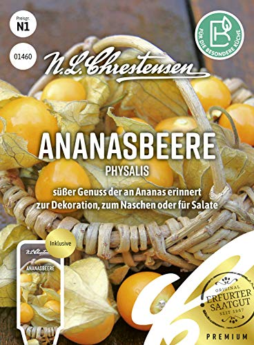 Ananasbeere Physalis, süßer Genuss der an Ananas erinnert, Samen
