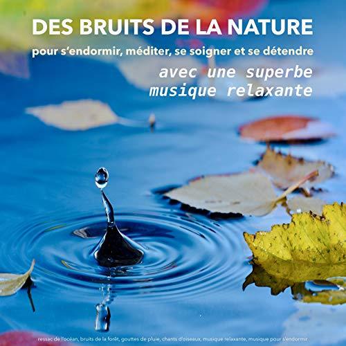 Des bruits de la nature pour s'endormir, méditer, se soigner et se détendre audiobook cover art