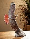 Wild Wings Soaring Red-tailed Hawk Sculpture by Phil Galatas, brown, orange