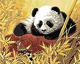 Kit de bordado set imágenes de bordado punto de cruz preimpreso panda 40x50cm kit de punto de cruz de arte diy bordado regalo para adultos principiante para decoración del hogar (11ct)