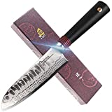 TUO Santoku Knife 5.5 inch - Damascus Kitchen Knives - Japanese AUS-10 Blade -...