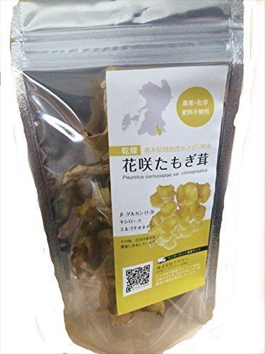 (セット販売) 乾燥 花咲たもぎ茸10g×2個