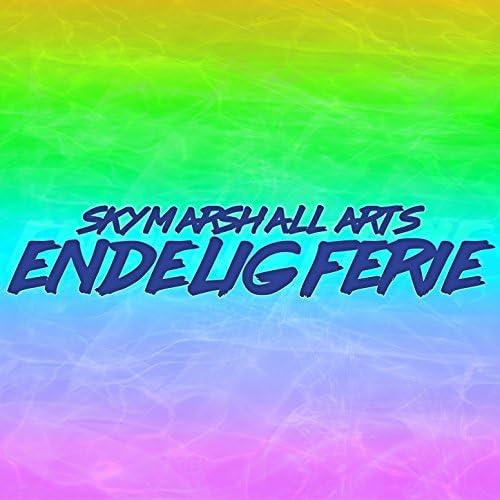 SkyMarshall Arts
