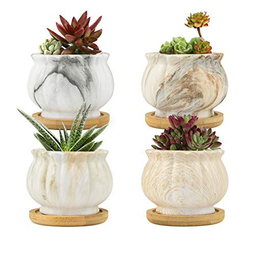 Perfect for Home Office Decor and Unique Gift for Family Friends Colleague Marbling Ceramic Succulent Pots Flower Pot with Bamboo Trays FairyLavie 2.5 Inch Modern Planter for Indoor Plants Set of 4