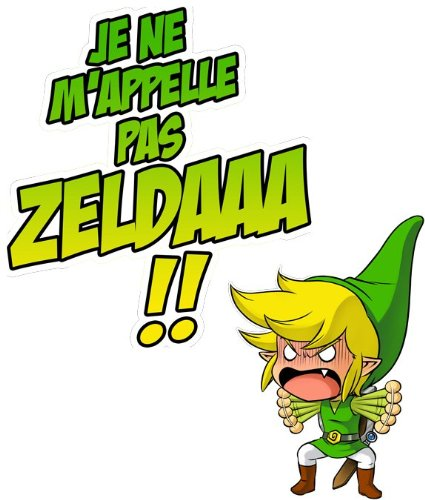 T-Shirt Jeux Vidéo - Parodie Zelda - Un Coup de gueule de héros... - T-shirt Homme Noir - Haute Qualité (634) - Small