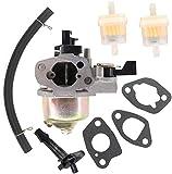 SYCEZHIJIA Piezas de Repuesto para cortacésped Carburador para Einhell BG-PM 46 S-HW SE/BG-PM 46/3 S/BG-PM 51 S-HW Lawnmower Carburador de carburador Kit de Filtro de Combustible