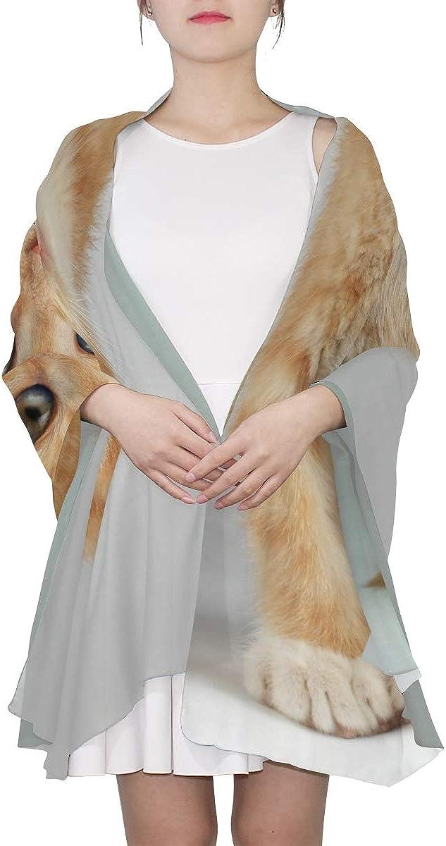 Color Scarf For Women Cute Little Kitten Big Scarfs For Women Color Fashion Neckerchief Scarf For Women Lightweight Print Scarves Wrap Shawl Woman Scarf