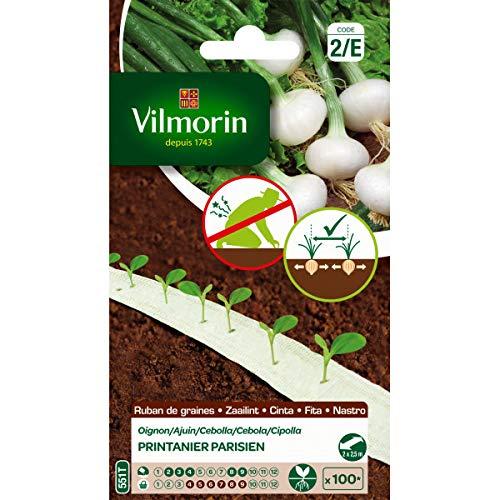 Vilmorin Ruban de graines Oignon printanier Parisien HF1 5m