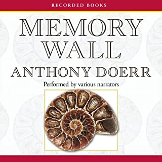 Memory Wall audiobook cover art