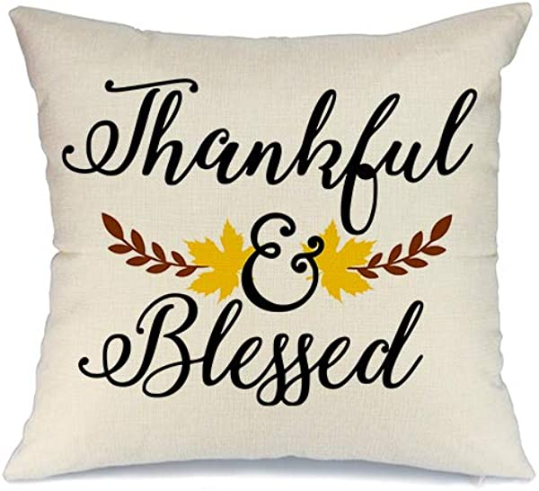AENEY Fall Pillow Cover 18x18 Inch Thankful And Blessed Thanksgiving Pillow Cover Throw Pillow For Fall Decor Farmhouse Fall Decorations Decorative Pillow Cover
