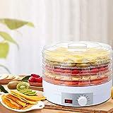 350 W 5 pisos deshidratador de frutas y verduras, 35 – 75 °C, estante transparente ajustable, temperatura ajustable para...