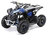 Actionbikes Motors Mini Kinder Elektro Quad ATV RENEBLADE 1000 Watt Pocket Quad - Original Saefty Touch Fußschalter - 36 Volt - Kinder Pocketquad...