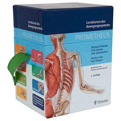 Sport-Tec Prometheus Lernkarten des Bewegungssystems, 394 Karten