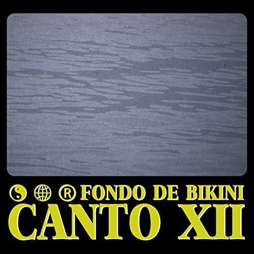 Fondo de Bikini