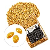 NEW YORK CITY WAX Premium Wachs zur Haarentfernung 1 kg - Sanftes Full Body Waxing ab 2 mm...
