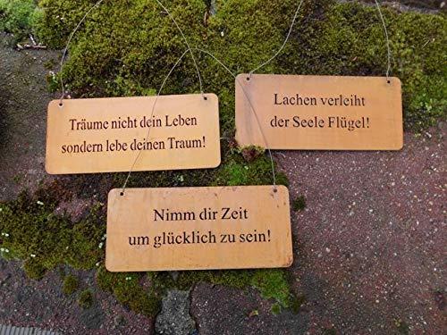Deko-Impression 3er Set dekorative Schilder Sprüche Weisheiten Leben Eisen rostig