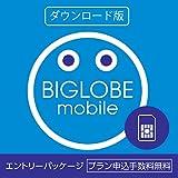 DL版 BIGLOBEモバイル エントリーパッケージ