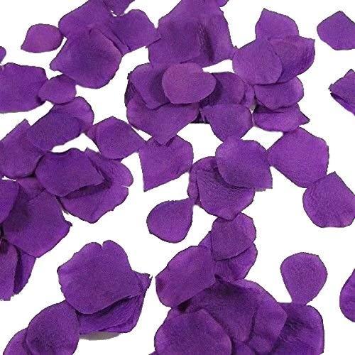 1000 purple rose petals - 1