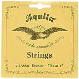 Aquila 1B Set de 5 cordes pour banjo DBGDG