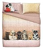 Bassetti - Juego de funda nórdica de algodón con funda de almohada, fabricado en Italia, 155 x 200 cm, incluye una funda de almohada de 50 x 80 cm (Dosg & Cats)