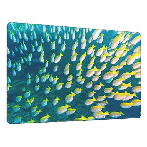 Alfombrilla de ratón para Juegos30X80CM,Base de Goma Antideslizante,Cardumen de Peces pargo patudo en arrecifes de Coral Tropicales,Adecuada para Jugadores,PC y portátiles