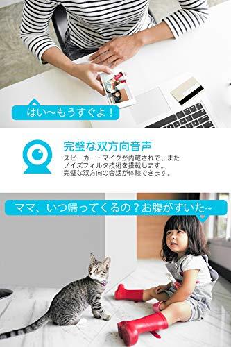 ieGeek『ネットワークカメラ』