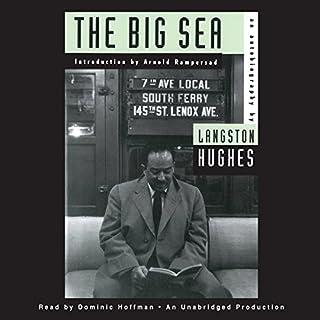 The Big Sea cover art