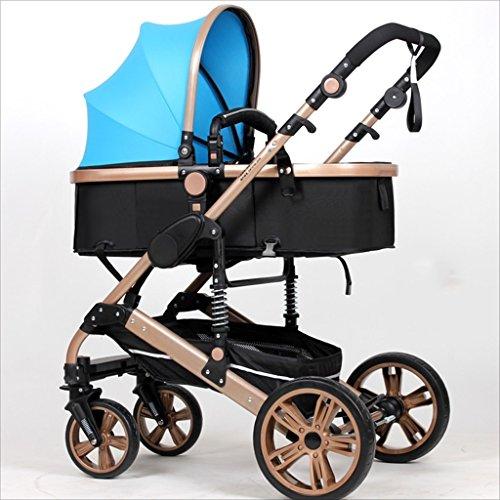 Strollers DD Bicicleta de bebé El Cochecito Plegable para bebés recién Nacidos...