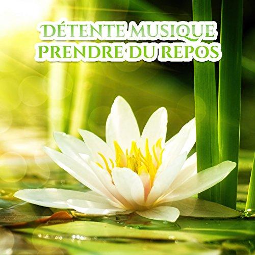 Détente musique: Prendre du repos - New age et zen pour la relaxation profonde, Yoga, Massage apaisant, Tai chi, Sons de la nature et orientale instruments