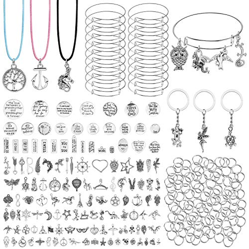 DIY Charms Bracelet Making Kit, Assorted Shape Charms Exquisite Pendant Adjustable Wire Bracelets for Necklaces Bracelet KeyringJewelry Making Craft ,306 PCS