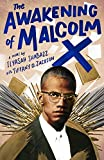 The Awakening of Malcolm X: A Novel