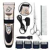 Zetong Tech Profi Keramik Schermaschine mit Zubehör Wiederaufladbare Tierhaarschneider Haustiere Elektrische Haarschneidemaschine für Hunde,Katze Gold