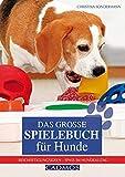 Das große Spielebuch für Hunde: Beschäftigungsideen - Spaß im Hundealltag - Christina Sondermann