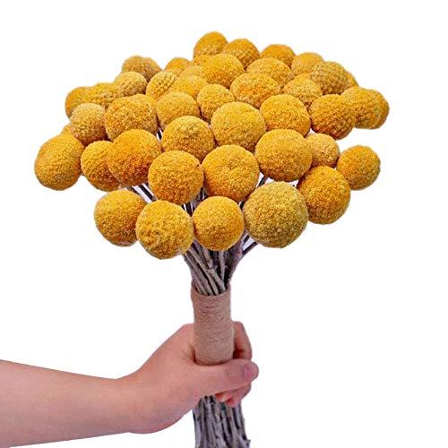 Kaxofang Ramo de flores secadas naturales de color amarillo para decoración del hogar