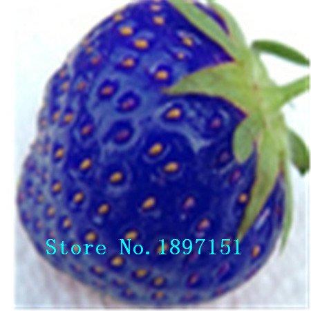 Grande vente 500 PCS géants Red Climbing Strawberry Seeds Fruit Graines Pour les semences rares Maison & Jardin Bricolage pour bonsaï