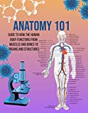 Anatomy 101 Guide to How the Human Body Functions From Muscles And Bones To Organs And Structures...