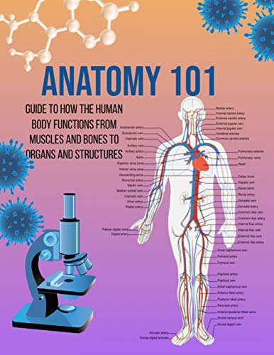 Anatomy 101 Guide to How the Human Body Functions From Muscles And Bones To Organs And Structures (English Edition)