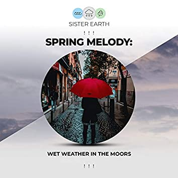 ! ! !  Spring Melody Wet Weather in the Moors ! ! !