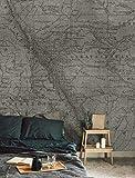 Wall81 The Rockies Carta da Parati, Fibre Tessili, Beige, XL-513x300cm